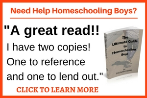 Boys and girls think differently, learn differently, and require a different educational environment to reach their full potential. Click through to discover 420 pages of encouragement and advice that will transform your journey!